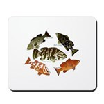 5 Grouper Mousepad