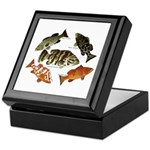 5 Grouper Keepsake Box