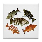 5 Grouper Tile Coaster