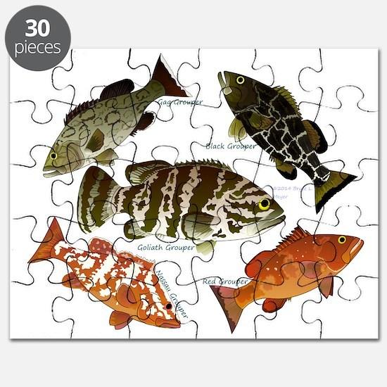 5 Grouper Puzzle