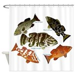 5 Grouper Shower Curtain