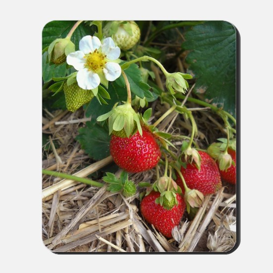 Strawberries in Summer Mousepad