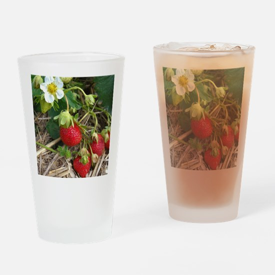Strawberries in Summer Drinking Glass