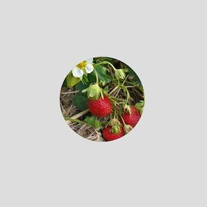Strawberries in Summer Mini Button