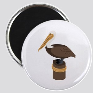Brown Pelican Magnets