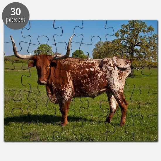 Texas Longhorn Puzzle