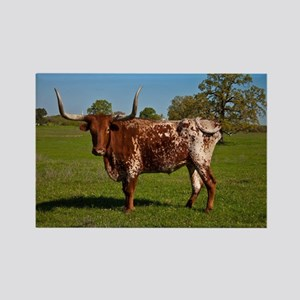 Texas Longhorn Rectangle Magnet