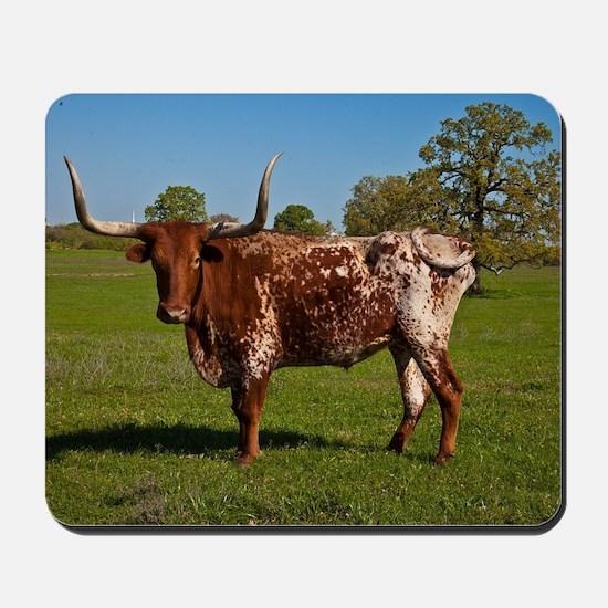 Texas Longhorn Mousepad