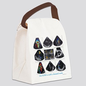 One echo Canvas Lunch Bag