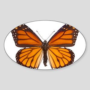 DANAUS PLEXIPPUS V Sticker (Oval)