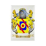 Ferrera Rectangle Magnet (100 pack)