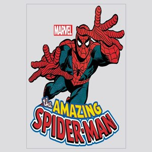 The Amazing Spiderman Wall Art