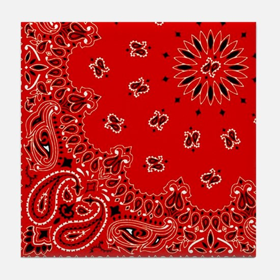 BBQ Red Paisley Bandana Scarf Western Fabric Print