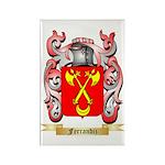 Ferrandiz Rectangle Magnet (100 pack)