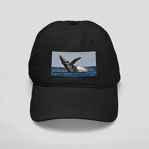 Humpback Whale 2 Baseball Hat