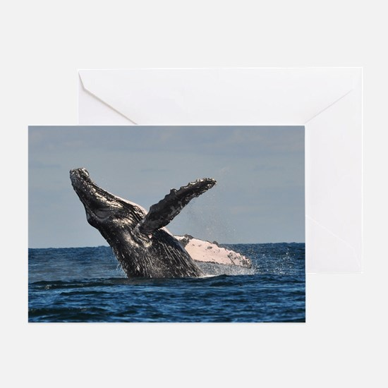 Humpback Whale 2 Greeting Cards