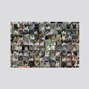 Cat Shelter Jessica's Cats Rectangle Magnet