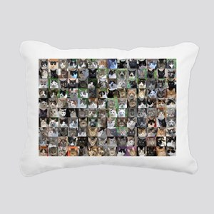 Cat Shelter Jessica's Ca Rectangular Canvas Pillow