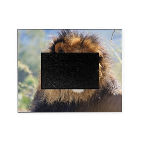 lion close up b picture frame by listing store 118487534. Black Bedroom Furniture Sets. Home Design Ideas