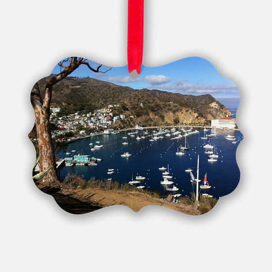 Catalina  Mountain View Ornament