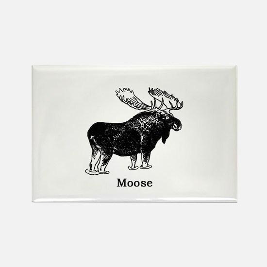 Bull Moose (illustration) Magnets