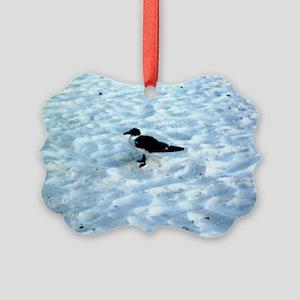 Pensive Seagull on Gulf Coast Ornament