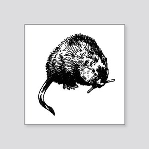 Muskrat Illustration Sticker