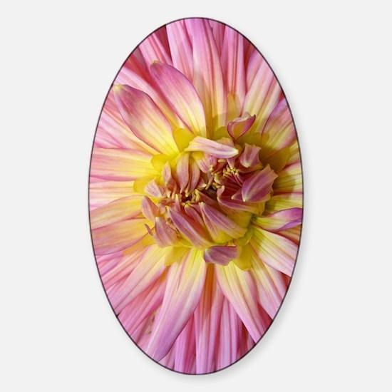 Dahlia Flower Sticker (Oval)