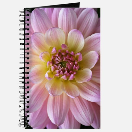 Dahlia Flower Journal