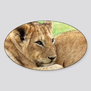 Lion Sticker (Oval)