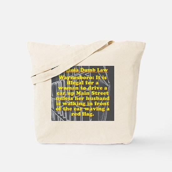 Virginia Dumb Law #9 Tote Bag