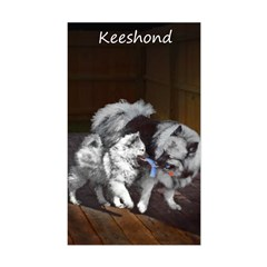Keeshond Playtime Sticker (Rectangle)