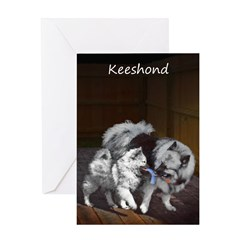 Keeshond Playtime Greeting Card