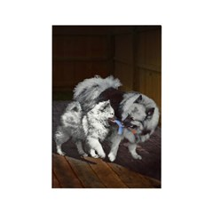 Keeshond Playtime Rectangle Magnet