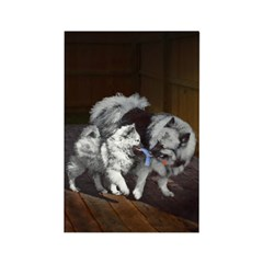 Keeshond Playtime Rectangle Magnet (10 pack)