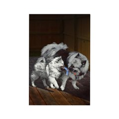Keeshond Playtime Rectangle Magnet (100 pack)
