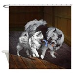 Keeshond Playtime Shower Curtain