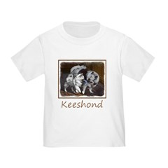 Keeshond Playtime T