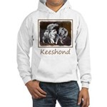 Keeshond Playtime Hooded Sweatshirt