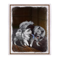 Keeshond Playtime Throw Blanket