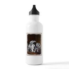 Keeshond Playtime Water Bottle