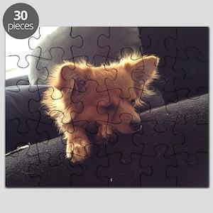 Lioness Puzzle