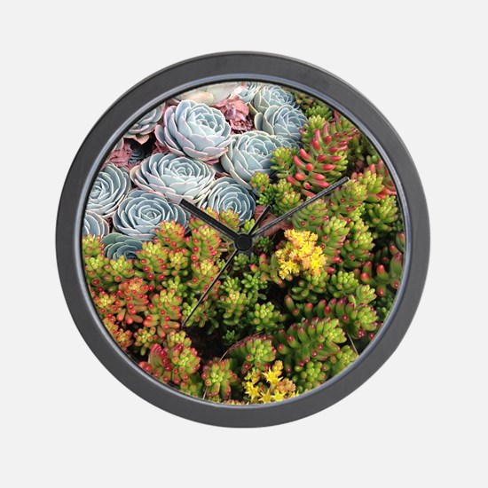 Echeveria and Jelly Beans Wall Clock