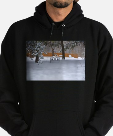Garden bench with snow Hoodie