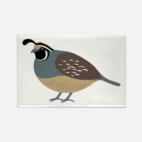 Valley Quail Magnets