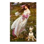Windflowers Bull Terrier Postcards (Package of 8)