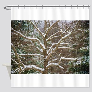 Winter trees on snow 2 Shower Curtain