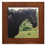 Horse Theme #11301 Framed Tile