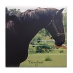 Horse Theme #11300 Tile Coaster