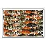 5 grouper pattern Banner